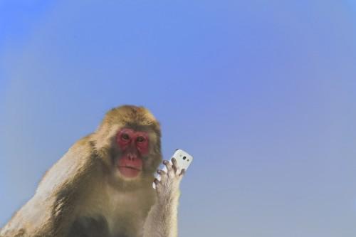 男が猿のようにチェックする!ずる賢い「モテLINE」の送り方2つ
